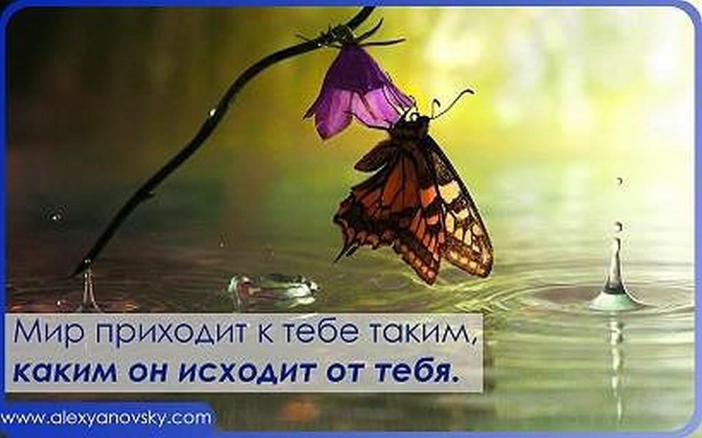 image00093
